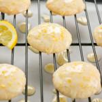 meyer lemon glace cookie 1