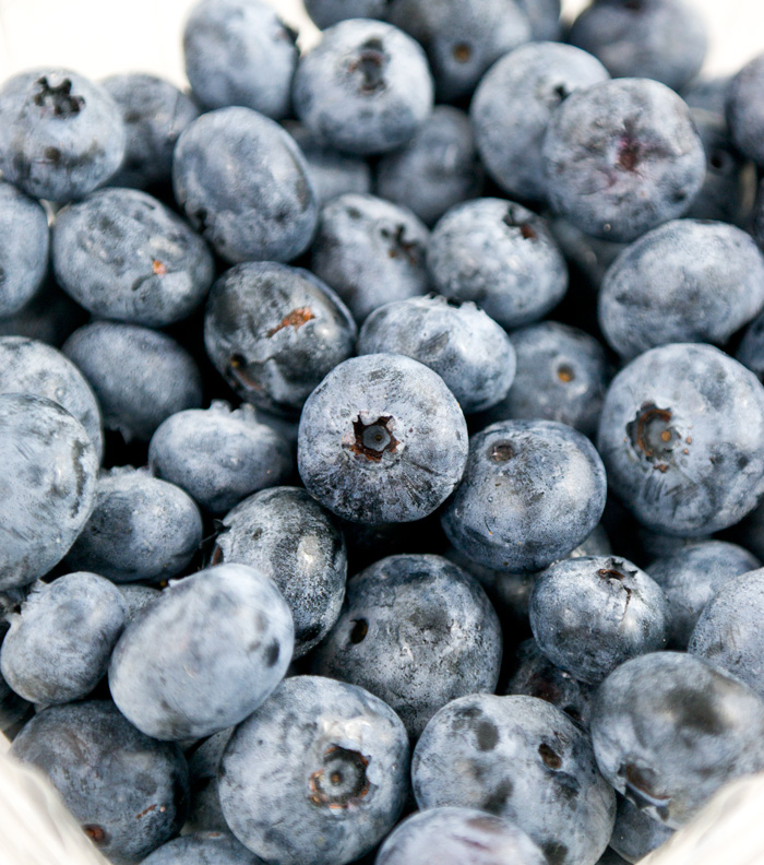 how to make blueberry juice from fresh blueberries