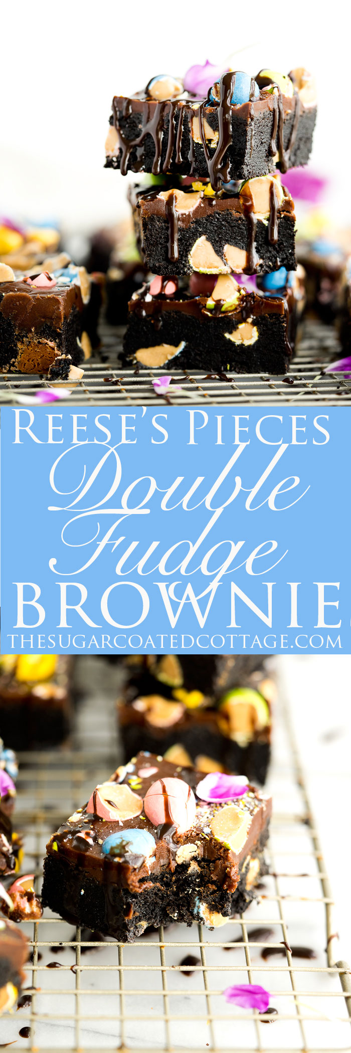 Reese's Pieces Double Fudge Brownie Recipe. My childhood favorite candy, Reese's Pieces, folded into deep dark fudge brownies and then sprinkled on top of fudgy frosting. By far the best fudgy brownie recipe!! | thesugarcoatedcottage.com #brownies #recipe #reeses pieces #frosting