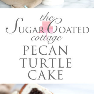 Pecan Turtle Cake - Chocolate, pecans and caramel make this cake awesome. cake, recipe, pecan turtles, candy, layer cakes, cake decorating